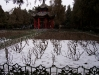 Remnant snow, White Horse Temple, Luoyang Henan